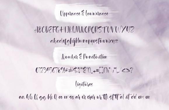 download Agathe Ledden Calligraphy Font