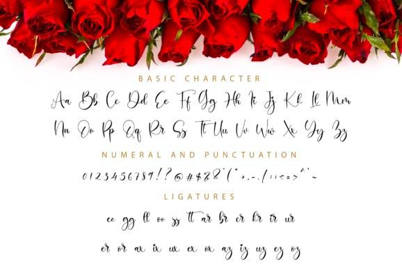 Balimora Calligraphy Font download