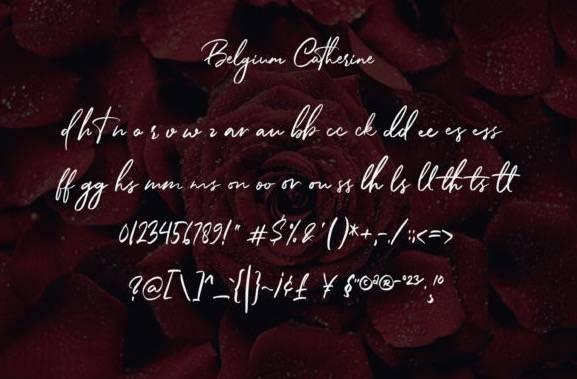 Belgium Catherine Handwritten Font free