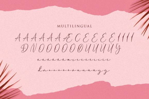 download Cherolina Lovely Elegant Handwritten Font
