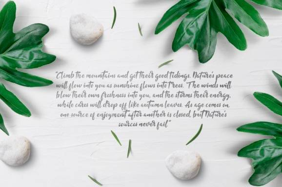 free Fishtail Decorative Font