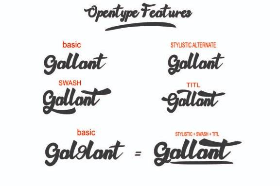 Gallant Calligraphy Font free