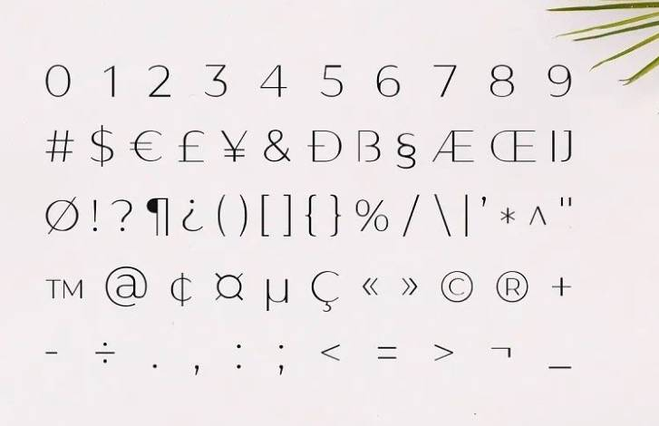Gantic Sans Serif Font free