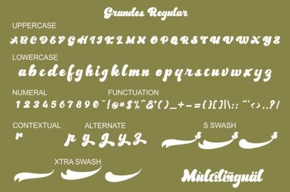 Grandes Vintage Script Font download