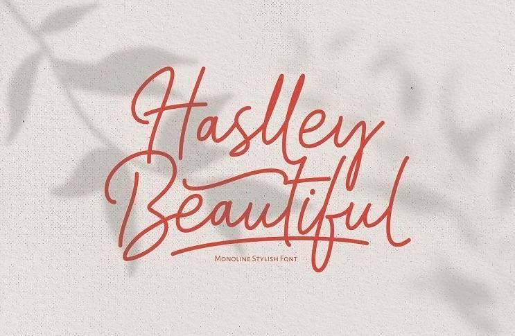Haslley Beautiful Font