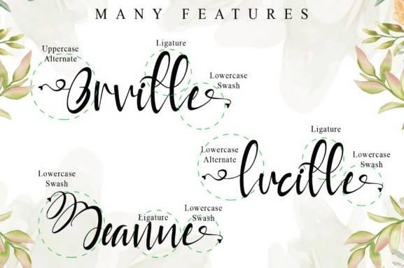 Rayya Calligraphy Font download
