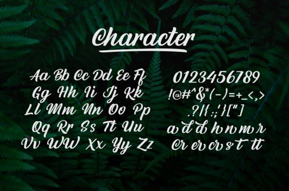 Rottend Script Font download