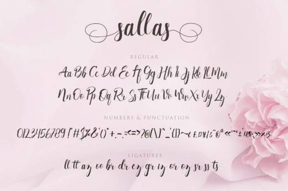 download Sallas Calligraphy Font