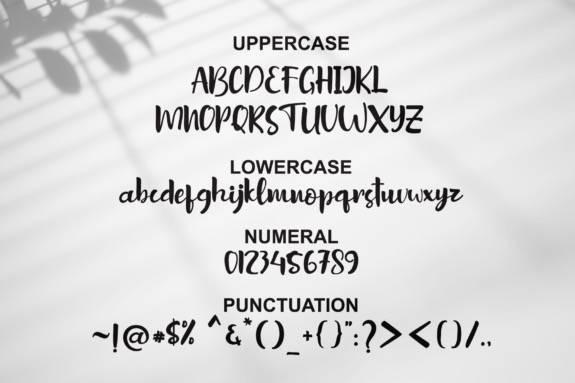 Sottel Calligraphy Font download