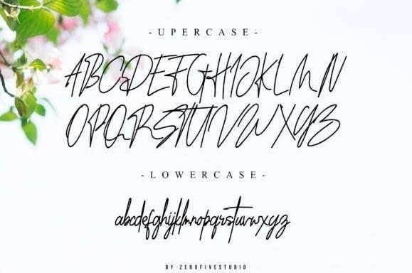 free Southwell Signature Font