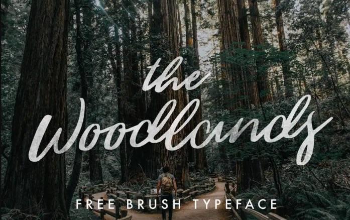 Woodlands Font download free