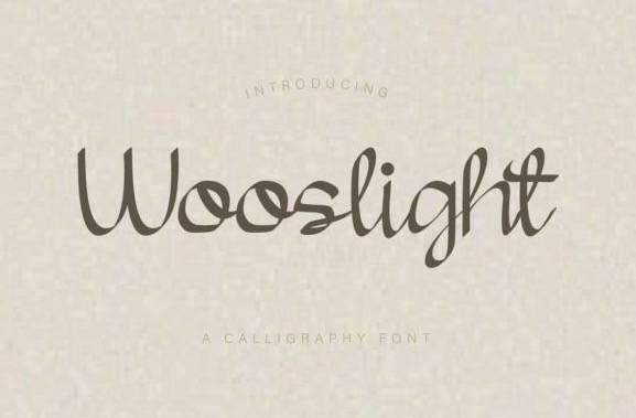 Wooslight Modern Calligraphy Font