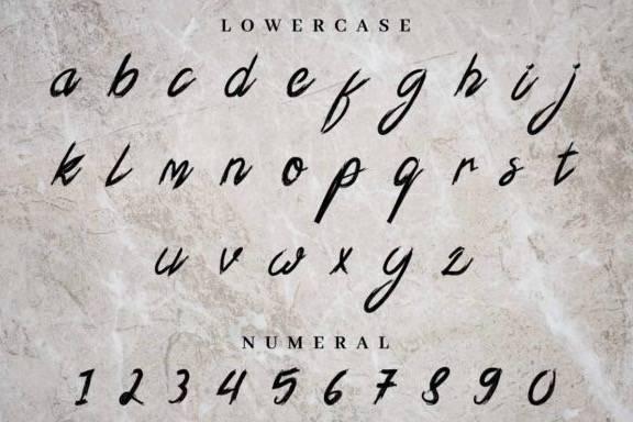 Xander Bruce Script Font download