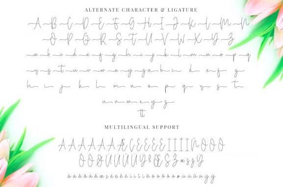 Miya Wayne Handwritten Font