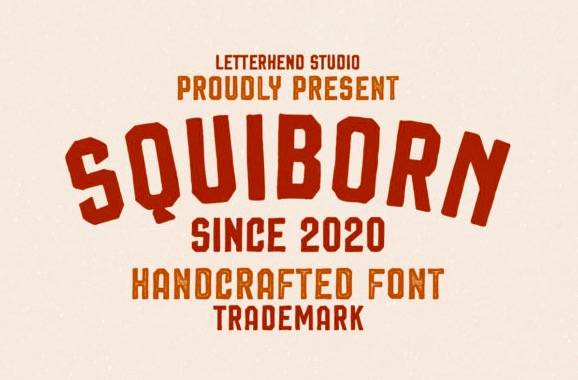 download Squiborn Display Font