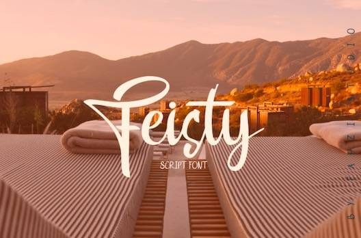 Feisty Font free