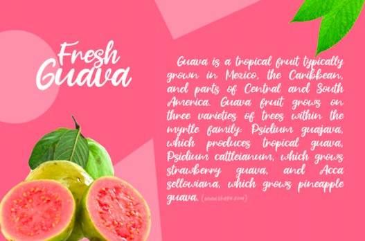 Fresh Guava Font download