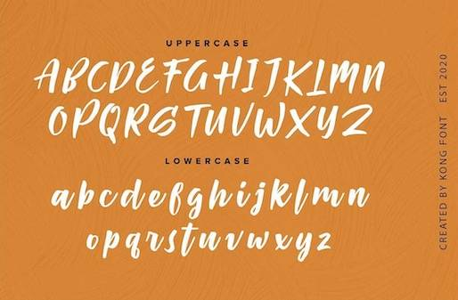 Passifille Font free