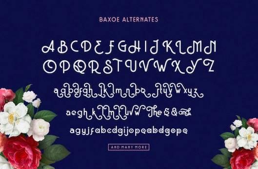 Baxoe Font free