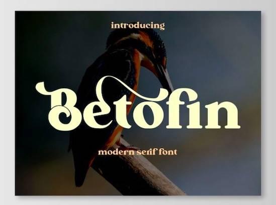 Betofin font free download