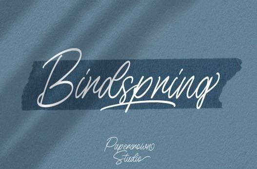 Birdspring Font free download
