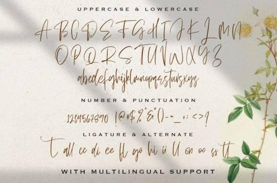 Sellviny Queen font