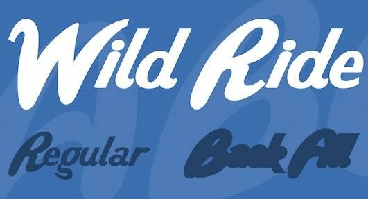 Wild Ride Font Family