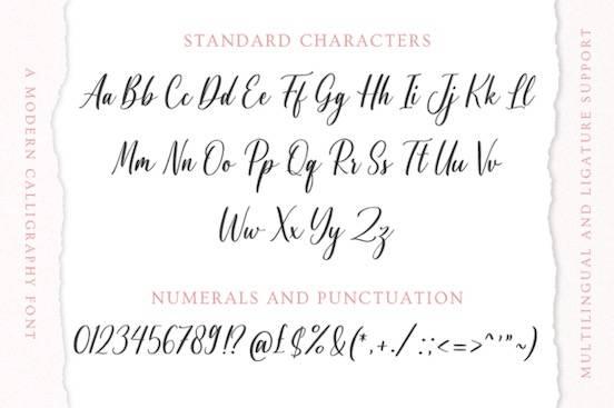 Agnetta font download