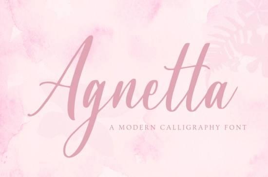 Agnetta font free download