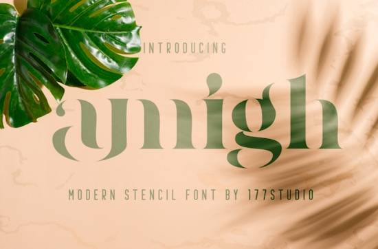 Amigh font free download