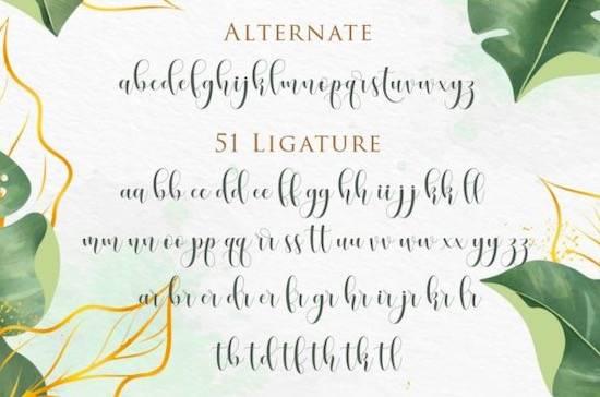 Honney Font free