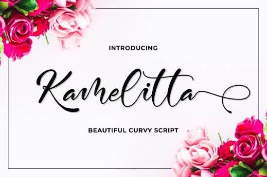 Kamelitta font free download
