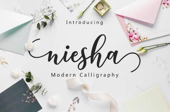 Niesha font free download
