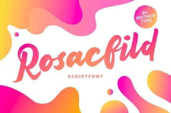 Rosacfild font free download