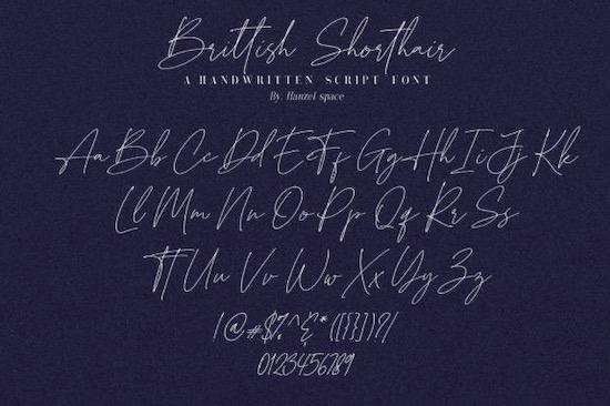 Brittish Sorthair Font free