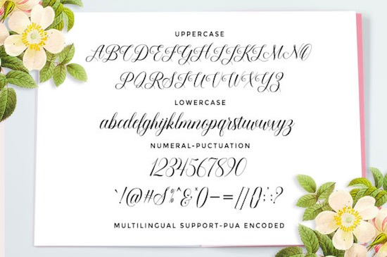 Beauty Queen font free download