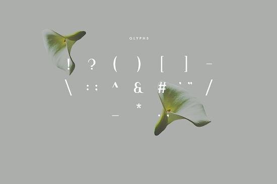 Viola font download