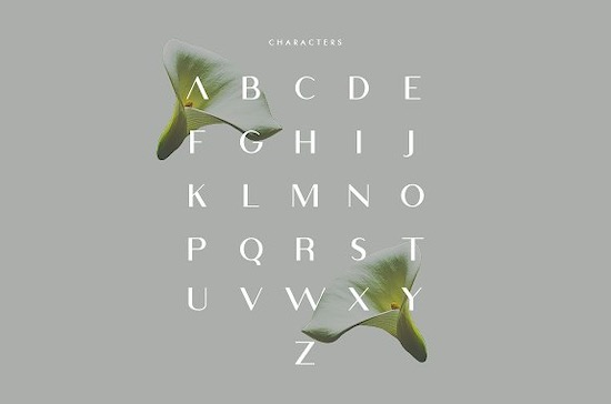 Viola font free
