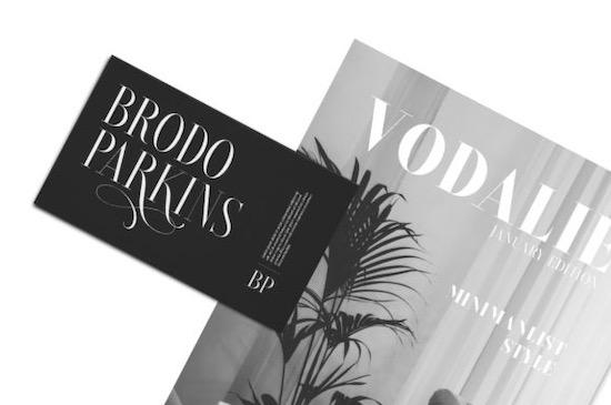 Brioche font download