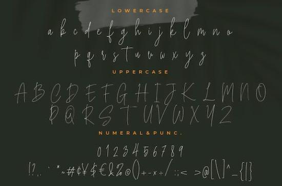 Bucherry font download
