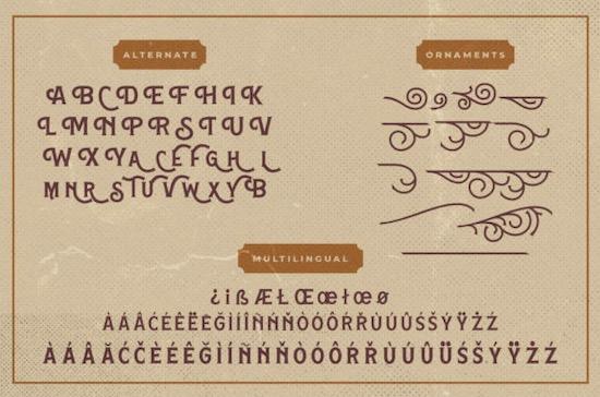 Hamston font free download