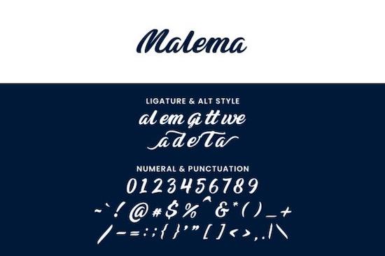 Malema font download