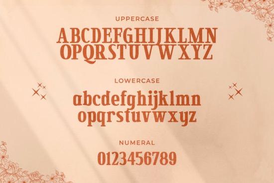 Secret Mansion font download