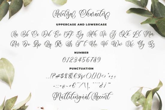 Anelisa font free