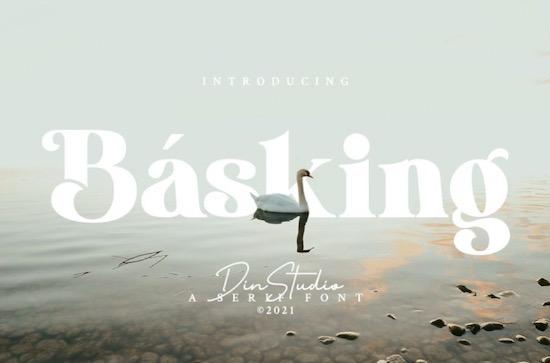 Basking font free download