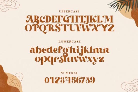 Beachfly font download