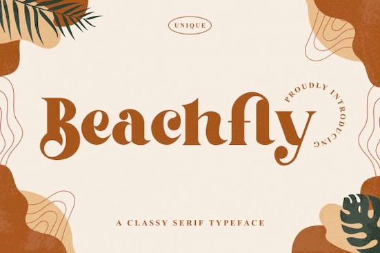 Beachfly font free download