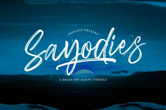 Sayodies font free download