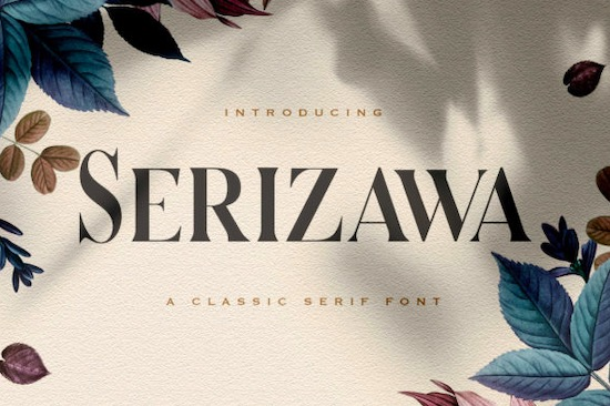 Serizawa font free download