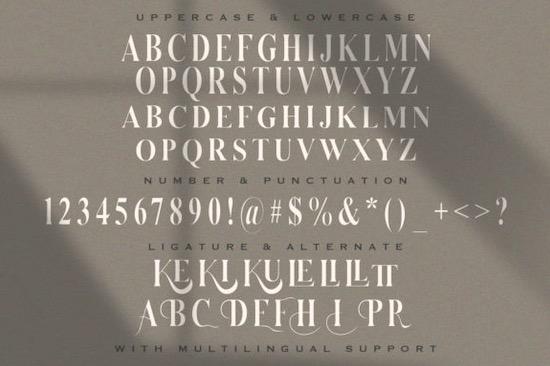 Serizawa font free